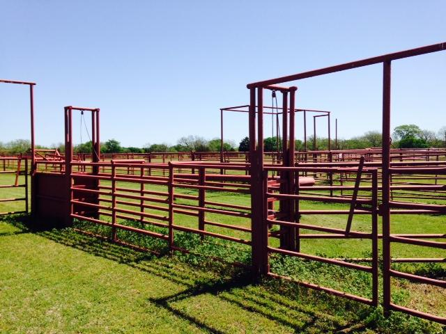 chutes are in place for calf roping lane that sits next to the l