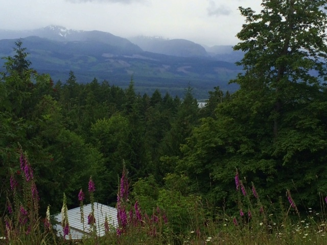 View of Vancouver Island from one of the buildable sites