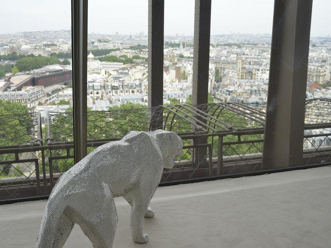HomeAway Eiffel Tower i