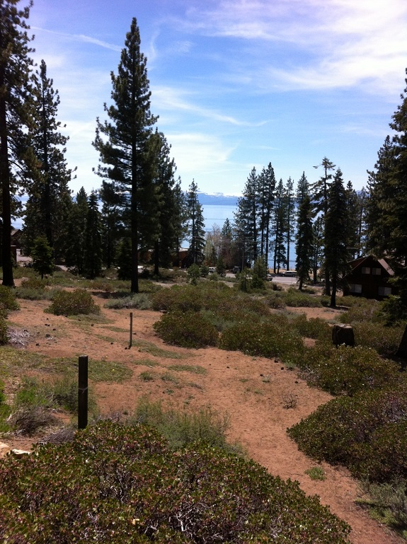 Tahoe Backyard & conservation area