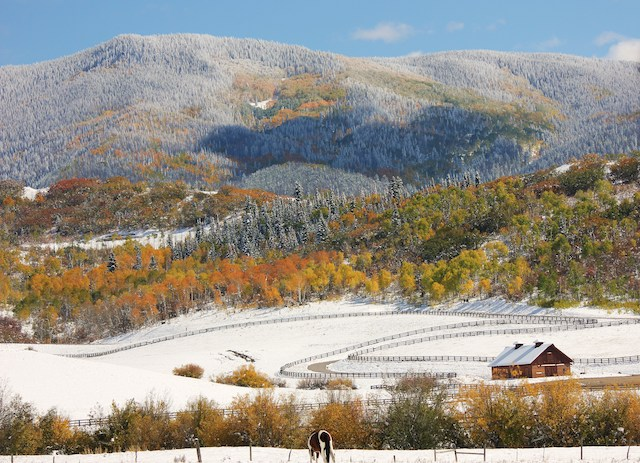 Fall Barn - One-of-a-kind Alpine Mountain Ranch & Club epitomizes real estate's Golden Rule